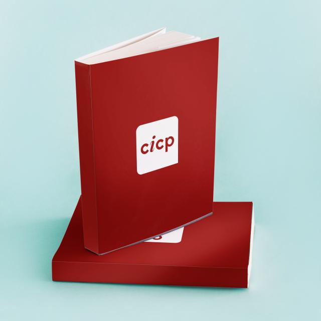 http://cicp.eeg.uminho.pt/wp-content/uploads/2020/05/livros-CICP-640x640.png